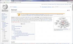 The Vietnamese Wikipedia